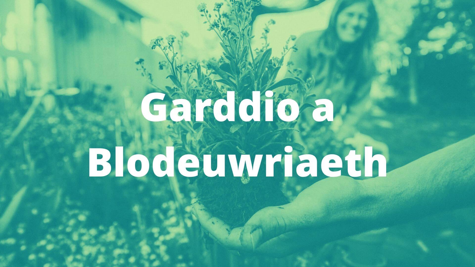 garddio a blodeuwritaeth banner