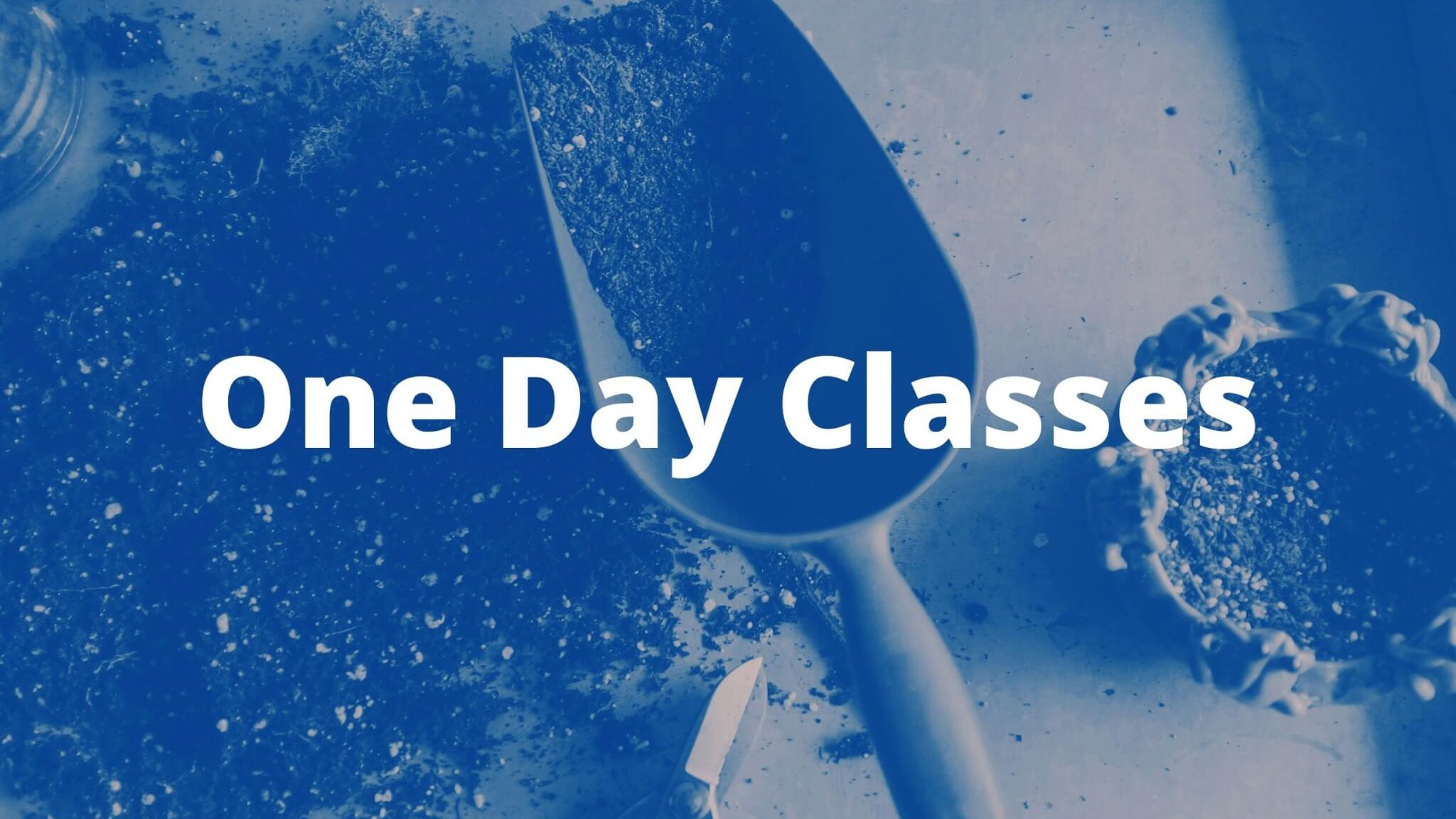 One Day Classes banner